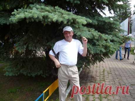 Валерий Образцов