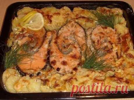 Запекаем рыбу - 6 рецептов - Кулинария и вокруг нее