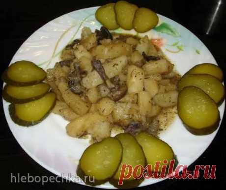 Las patatas, tush±nnyy con las setas (el plato magro) en la olla a presión Polaris 0305 - ХЛЕБОПЕЧКА.РУ - las recetas, las revocaciones, la instrucción