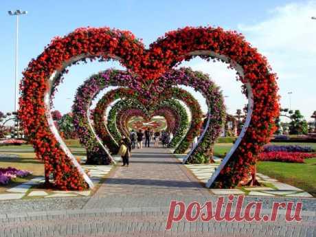 Парк «Сад чудес» в Дубае, ОАЭ / Слабый пол!