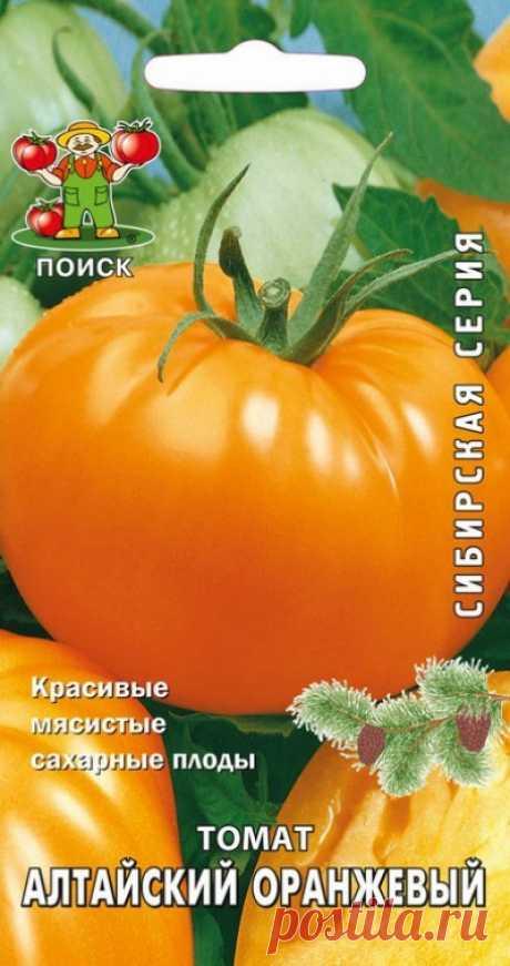 Томат Алтайский оранжевый: характеристика и описание сорта, отзывы кто сажал и фото урожайности помидоров