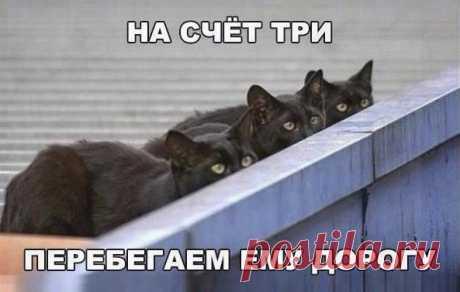 Любовь Ефименко