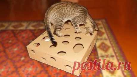 Игрушка для кота из картона своими руками.