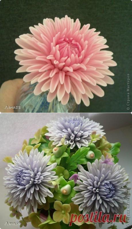 El crisantemo de la porcelana fría. MK Lany58