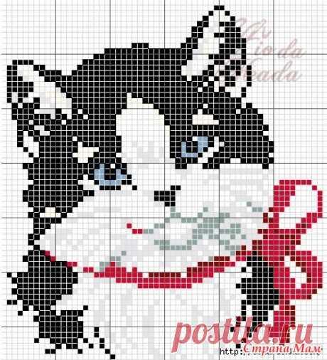 Кошки, котята, коты. Вышивка крестиком