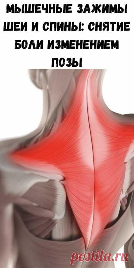 Мышечные зажимы шеи и спины: снятие боли изменением позы - Стильные советы