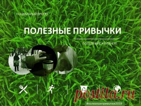 Однодневный социальный эксперимент Полезные привычки | Алексей Чистопашин Джинсовый экоблог