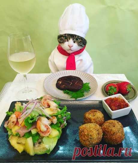 Сильная и независимая женщина каждый день ужинает с кошкой. Ридус