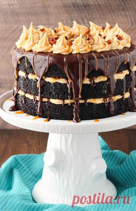 Turtle Chocolate Layer Cake - Life Love and Sugar