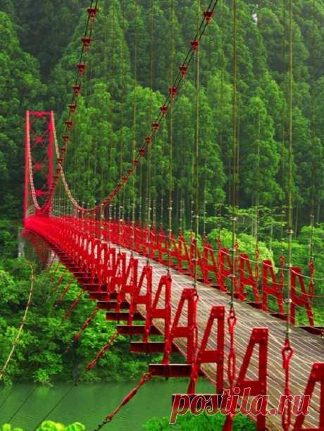 «Красный мост в Японии» — карточка пользователя Мария С. в Яндекс.Коллекциях