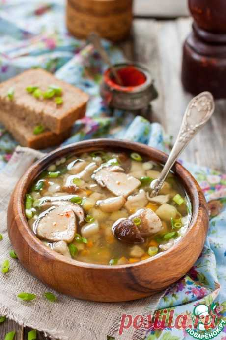 СМОТРИТЕ: Белые грибы — подарок природы людям. Рецепт грибного супа