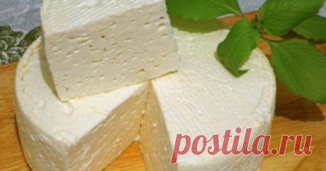 ♥ღ♥Домашний французский сыр: вкусно, просто♥ღ♥