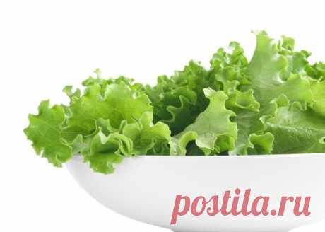 Листовой салат для красивой кожи