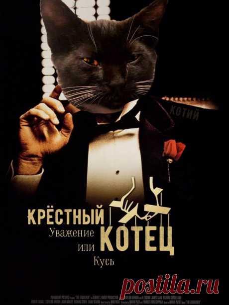 16 забавных постеров с котами в главной роли