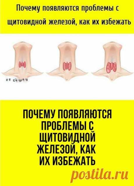 Заболевания щитовидной железы на сегодняшний день являются довольно популярными. Ими страдает большое количество людей, особенно женская половина. Это заболевание очень серьёзное, так как гормоны, содержащиеся в щитовидной железе, являются основными регуляторами гомеостаза организма человека. При непосредственном их участии происходят главные метаболические процессы в органах и тканях.
