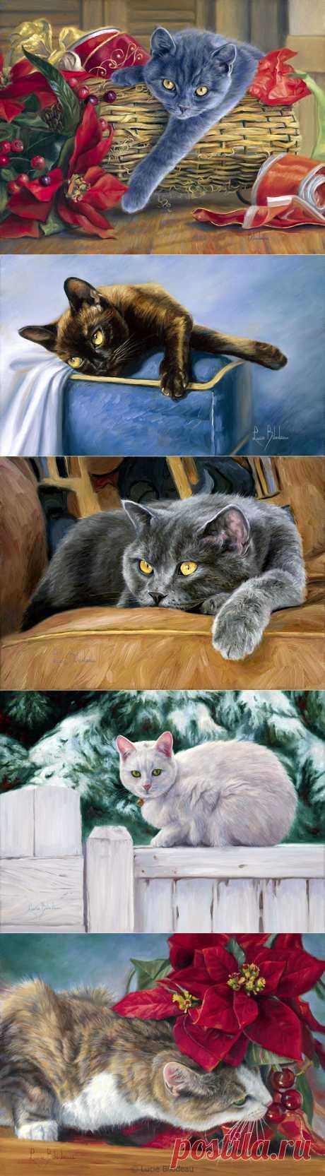 Lucie Bilodeau. Кошки. Часть- 2..