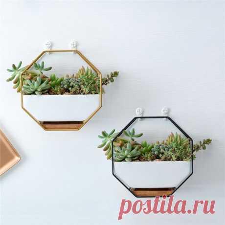 Настенное крепление Набор рамок Nordic Style Восьмиугольный суккулентный цветочный горшок Стол Дисплей Растения горшок
