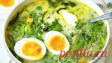 Зеленый борщ с щавелем и яйцом