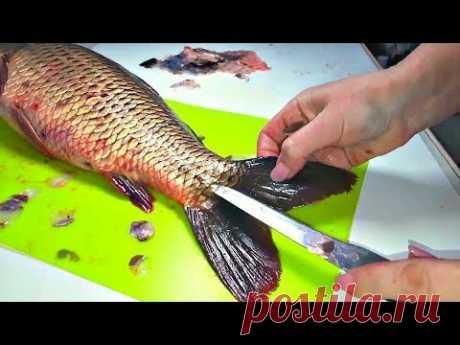 Como limpiar el pez en el apartamento y no ensuciar la cocina escamas. - YouTube