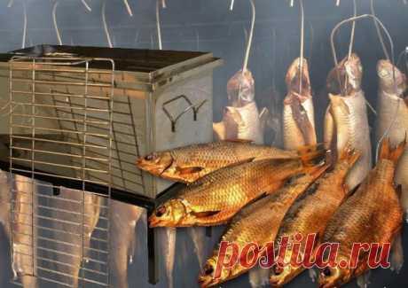 """Советы бывалых рыбаков по копчению Рекомендации, рецепты и советы по копчению рыбы и мяса в дачных (походных условиях) с рыбацких форумов: """"По единогласному мнению всех едоков, рыба получается вкуснее, если вместо покупной ольховой щепы использовать яблоневые ветки. Ветки нарезаю в длину примерно 10 см, диаметром около 1 см. На небольшую коптильню таких нужно штук 15-20. Только они должны быть не сухие."""" """"Можно использовать так же ветки смородины и вишни. Рыбу можно заворачивать…"""