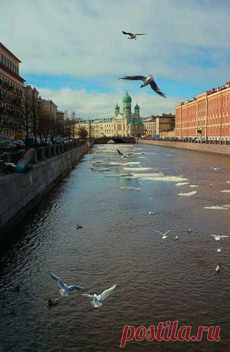 (4) Арт Петербург