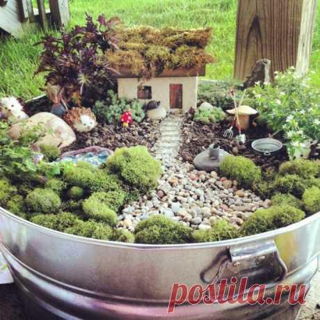 Чудесный мини сад: восхитительные идеи