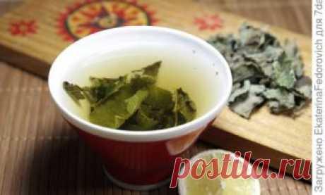 Комбинированный чай из этих трав — отличное средство для снятия усталости, при бессонице или нервных растройствах. Отдельно мята помогает
