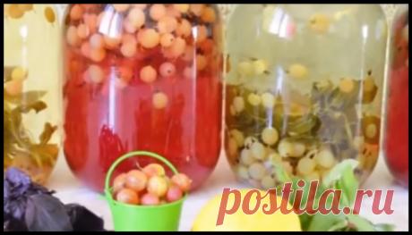 """Домашнее """"Мохито"""" на зиму - два разных рецепта (с мятным и базиликовым вкусом)!"""