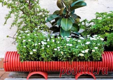 Для обустройства сада могут использоваться разноплановые материалы, но наиболее функциональным являются именно трубы ПВХ. Из канализационной основы можно изготовлять функциональные вещи для выращивания растений.