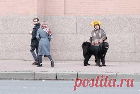 Монголдог Адис Алмазик со мной.