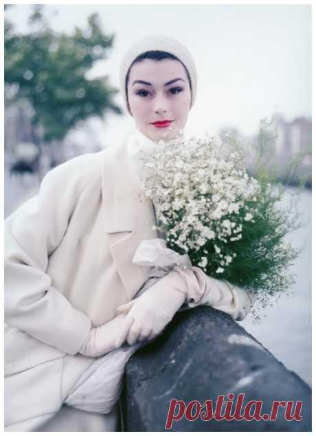 Anne Gunning  1953  Photo Milton Greene