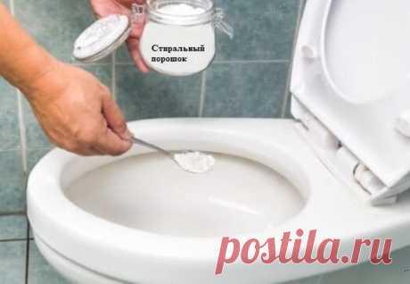 По совету подписчицы почистила унитаз стиральным порошком, и что из этого получилось | Полезные советы для дома и сада | Яндекс Дзен