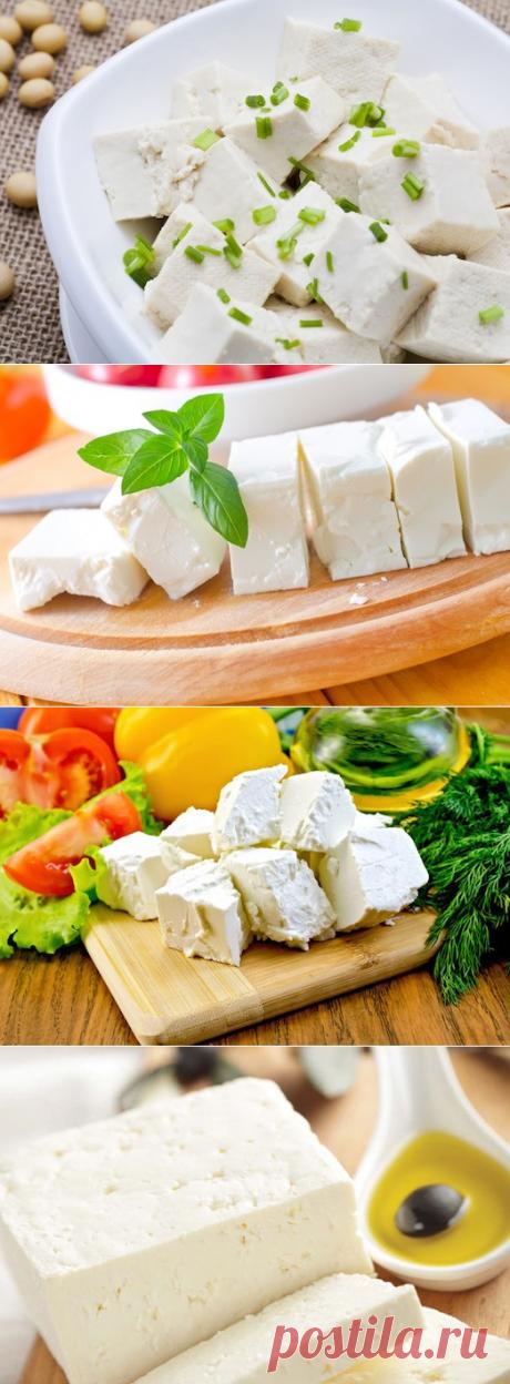 ¡En absoluto difícil! Preparamos el queso griego feta: 4 modos   las recetas Sabrosas