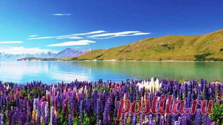 Оз.Текапо.Нов Зеландия