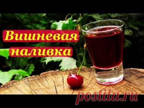 Fruit liqueur from cherry in house conditions: what differs from tincture, the main ingredients, recipes in