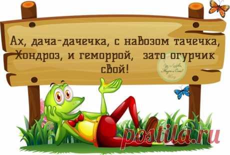 To holiday - to be? - Sadovodka