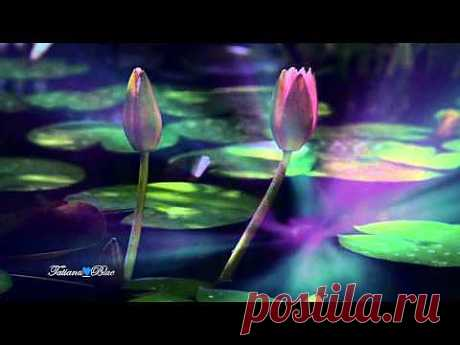 ▶ Giovanni Marradi - Peacefully - YouTube