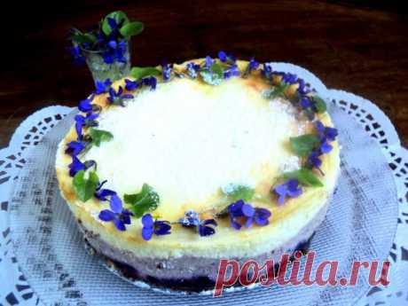 Сырник с черникой «Фиалки» / Пироги / Кукорама — вкусные рецепты!