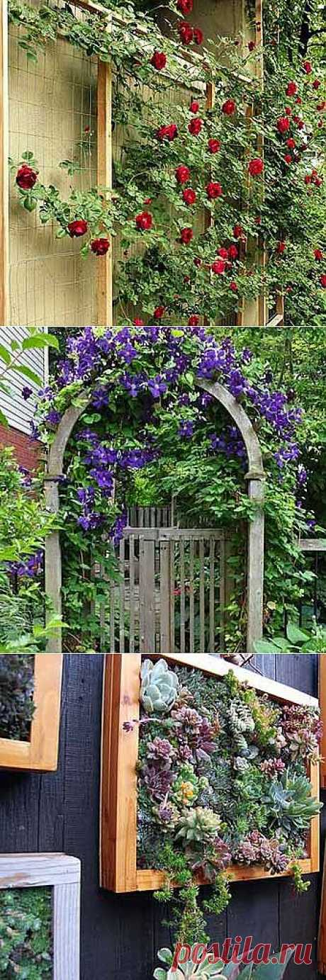 Фото заборов: 35 заборов с цветами