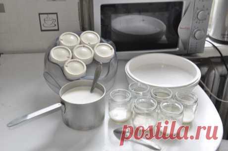 Натуральный йогурт в домашних условиях - не только вкусно и полезно, но ещё и выгодно!   Безасфальта   Яндекс Дзен