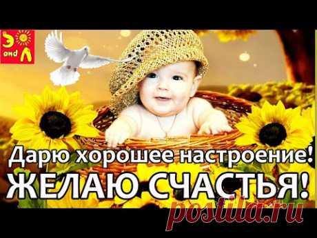 С Добрым Утром! Классная Песня! Желаю счастья Позитив на весь день Счастье непременно Тебе улыбнётся