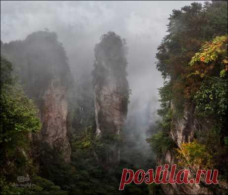 Национальный парк Чжанцзяцзе, Китай. Автор фото — Михаил Воробьев: