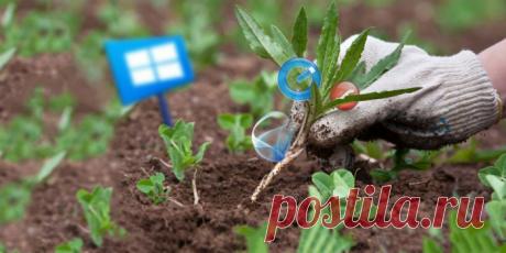 6 ненужных программ в Windows 10, которые следует удалить.