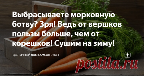 Выбрасываете морковную ботву? Зря! Ведь от вершков пользы больше, чем от корешков! Сушим на зиму! Морковь выращивается практически на каждом огороде или дачном участке. Не обходится без этого корнеплода приготовление первых блюд, разнообразных салатов, заготовок на зиму, да и просто морковный сок полезен и любим многими. Но далеко не многие знают о том, что морковная ботва превосходит по содержанию витаминов и микроэлементов корнеплоды и содержит ряд полезных веществ, которые в корнеплодах отс