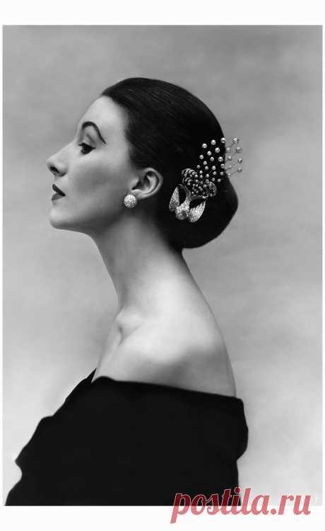 Myrtle Crawford Vogue Dec 1951  Photo Anthony Denney