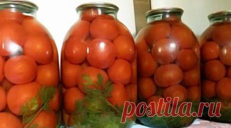 Необыкновенные помидоры: Результат превзошёл все ожидания