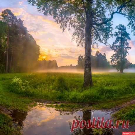 Фото: После ночного дождя. Фотограф путешественник Фёдор Лашков. Пейзаж - Фотосайт Расфокус.ру
