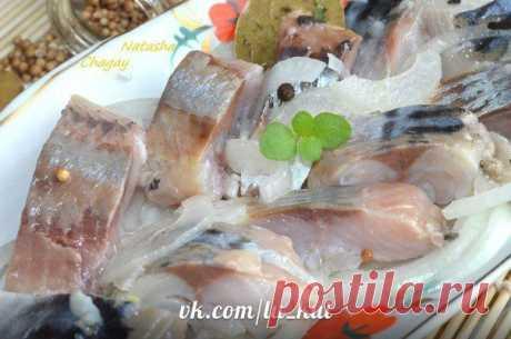 Соленая рыбка за 2 часа от Наташи Чагай.