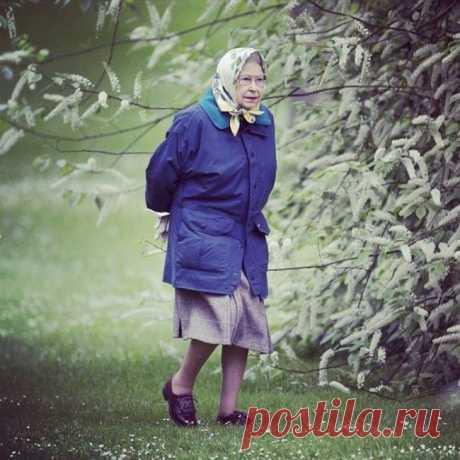 Вот так глянешь — бабуля в магазин идет... А присмотришься — королева Англии...