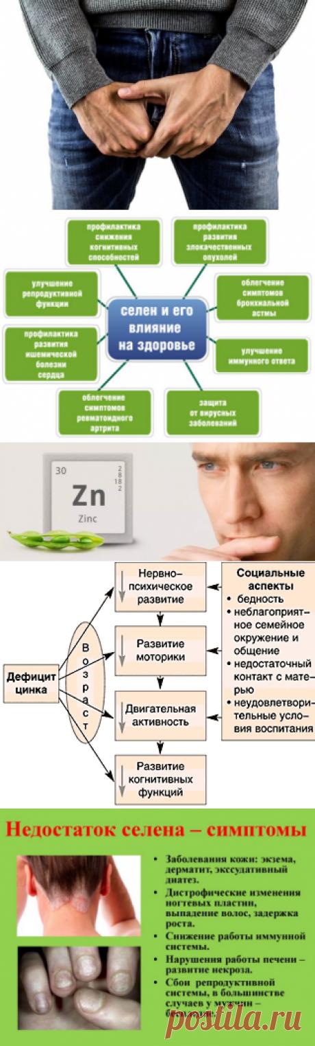 Цинк и селен для потенции мужчин | Кладовая здоровья | Яндекс Дзен